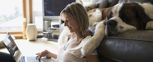 Dog sleeping on sofa next to woman with laptop