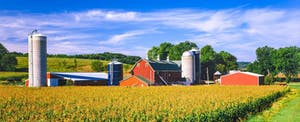 A red barn and farmhouse are pictured behind a golden-topped corn field in Iowa, where residents must file Iowa state tax returns.