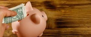Hand putting one dollar bill into pink piggy bank. Saving money concept